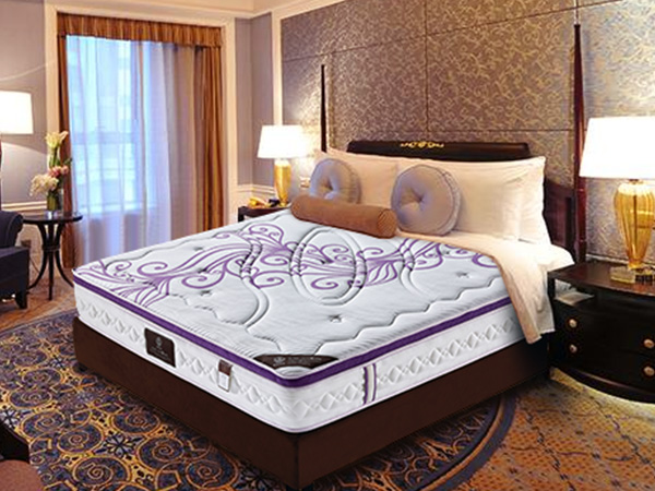 雨辉床垫棕垫天然环保椰棕1.2米1.5偏硬厚海绵定做棕榈床垫 YH9011