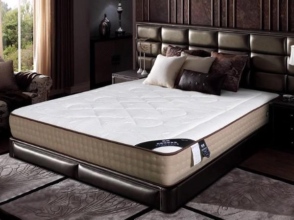 广东雨辉家庭版全身智能按摩床垫1.8米高纯度乳胶弹簧多功能助眠床垫