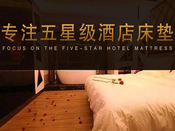 专注星级酒店床垫:雨辉智能共享床垫