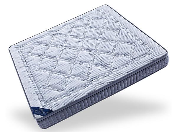 雨辉床垫超厚可定制海绵床垫经济型1.5m1.8m米加厚超软适中双人垫F168